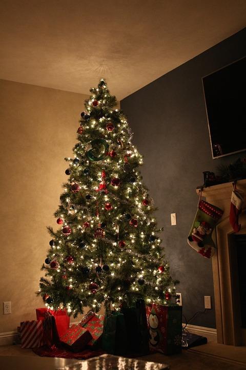 Sapin de Noël<BR> Bois chauffage