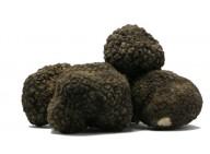 Lot de 8 Truffes noire fraîche - 250g
