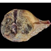 Jambon sans os de Porc Noir de Bigorre - 20 mois minimum